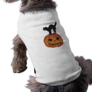 Old Fashioned Halloween Jack-O-Lantern & Black Cat Pet Tshirt