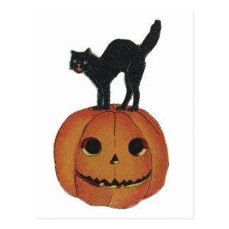 Old Fashioned Halloween Jack-O-Lantern & Black Cat Postcard
