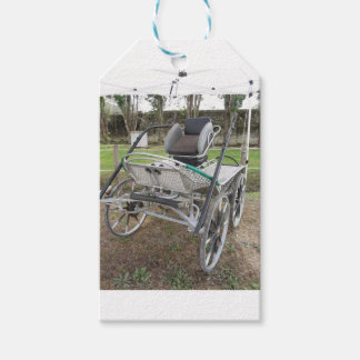 Old-fashioned horse carriage on green grass gift tags