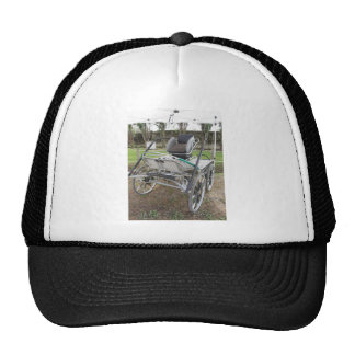 Old-fashioned horse carriage on green grass trucker hat