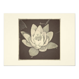 OLD FASHIONED LOTUS CARD