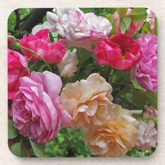 Old Fashioned Roses Beverage Coaster