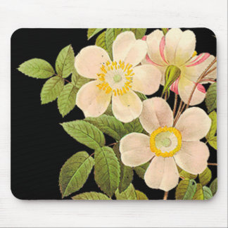 Old Fashioned Roses Mouse Pad