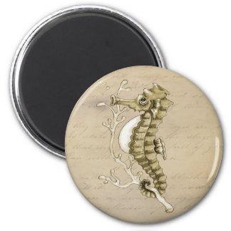 Old Fashioned Seahorse on Vintage Paper Background Fridge Magnet