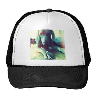 Old fashioned Weimaraner photo Trucker Hat