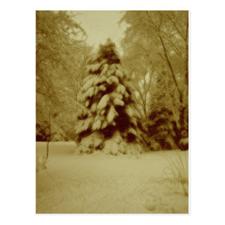 Old Fashioned Winter Snow Postcard