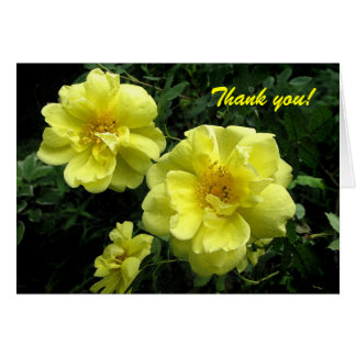 Old fashioned Yellow Rose Thank You Card