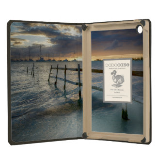 Old fence running into the ocean iPad mini retina cases