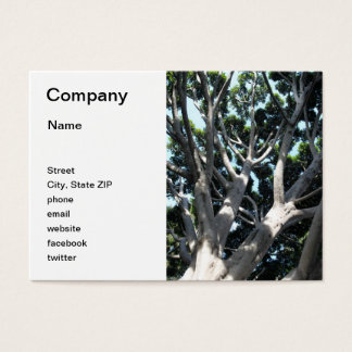 Old Fig Tree Business Card