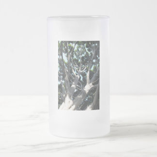 Old Fig Tree Frosted Glass Beer Mug