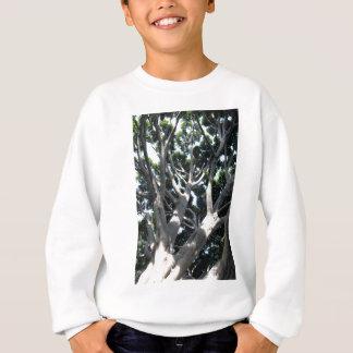 Old Fig Tree Sweatshirt