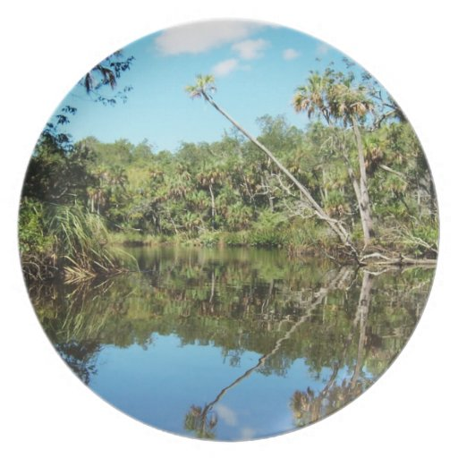 Old Florida Rivers Plate