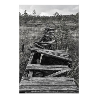 Old footpath in a marsh photo print