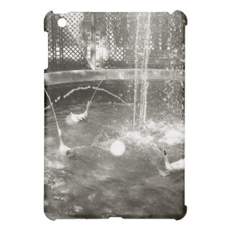 Old Fountain Cover For The iPad Mini