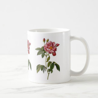 Old Garden Rose Coffee Mugs