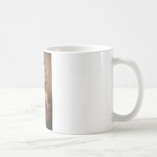 Old Geronimo Catcher Coffee Mugs