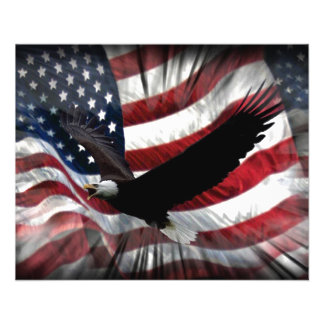 Old Glory with Eagle Flyer