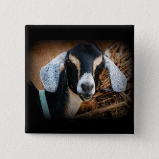 Old Goat Nubian Portrait Photo Button
