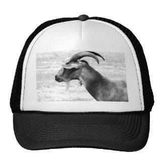 Old Goat Trucker Hat
