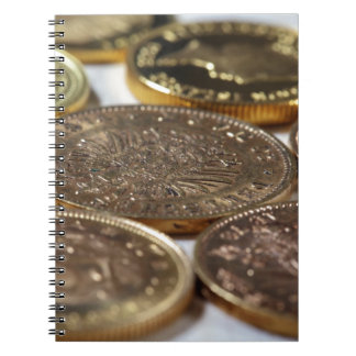 Old Gold Coins Spiral Notebook