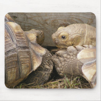 Old Gossips Mouse Pad