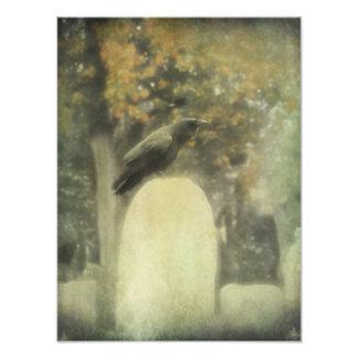 Old Graveyard Raven Photo Art
