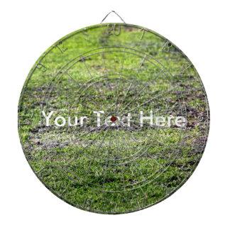 Old Green Grass Dartboard