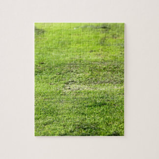 Old Green Grass Jigsaw Puzzles