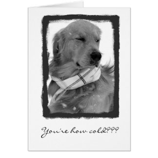 Old! Greeting Card