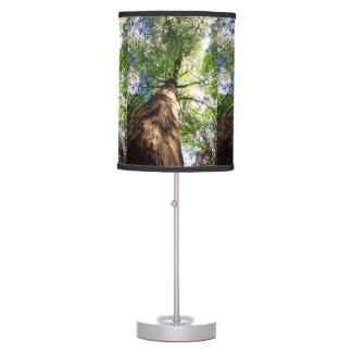 Old-Growth Beech Tree Desk Lamp