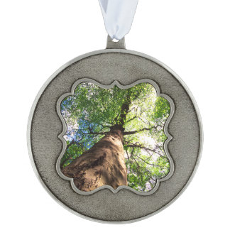 Old-Growth Beech Tree Pewter Ornament