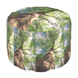 Old-Growth Beech Tree Pouf
