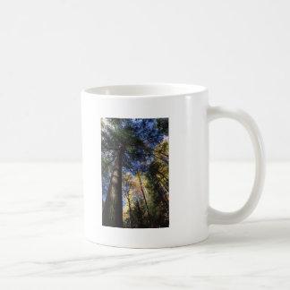 old growth coffee mug