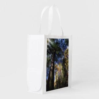 old growth hemlock tree grocery bag