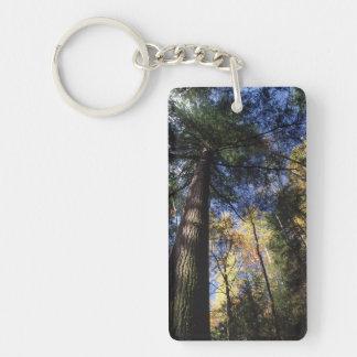 old growth hemlock tree Double-Sided rectangular acrylic keychain