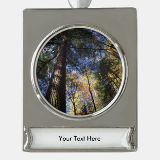 old growth hemlock tree silver plated banner ornament