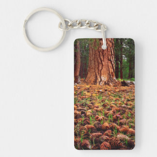 Old-growth Ponderosa tree with pine cones Double-Sided Rectangular Acrylic Keychain
