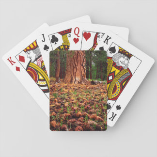 Old-growth Ponderosa tree with pine cones Playing Cards