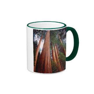 Old-growth Sequoia Redwood trees Ringer Mug