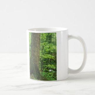 Old Growth Tree Joyce Kilmer Memorial Forest Coffee Mug