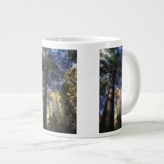 old growth trees large coffee mug