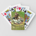 Old Hand Pump Well Poker Cards