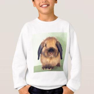 Old Holland Sweatshirt