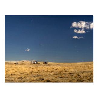 Old Homestead 01 Postcard