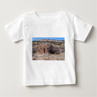 Old Homestead House of Stone Baby T-Shirt