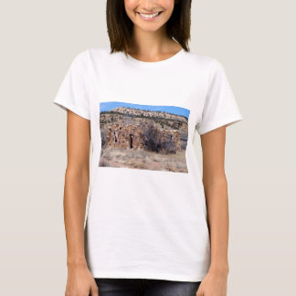 Old Homestead House of Stone T-Shirt