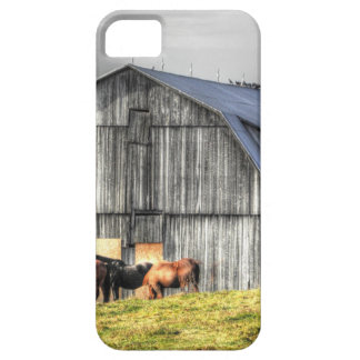 old horse barn iPhone SE/5/5s case