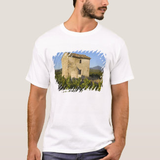 Old house in the Comtat Venaissin, Vaucluse, T-Shirt