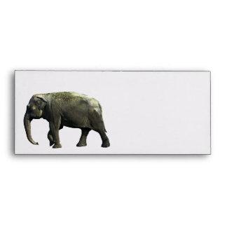 Old Indian Elephant Animals Wildlife Photography Envelope