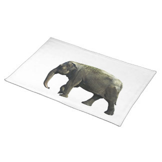 Old Indian Elephant Animals Wildlife Photography Placemat